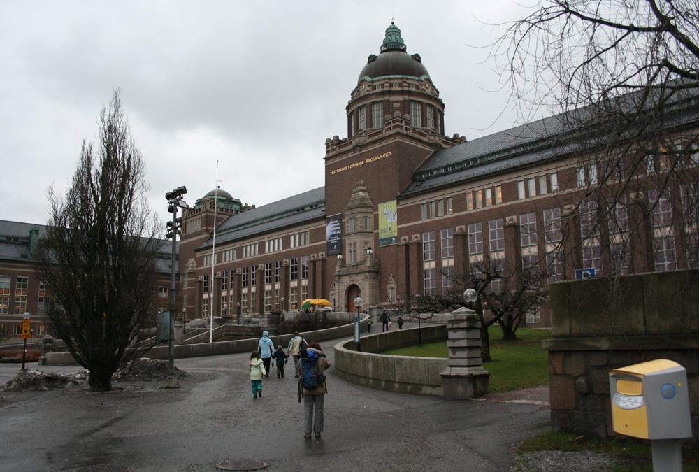A Természettudományi Múzeum (TTM)