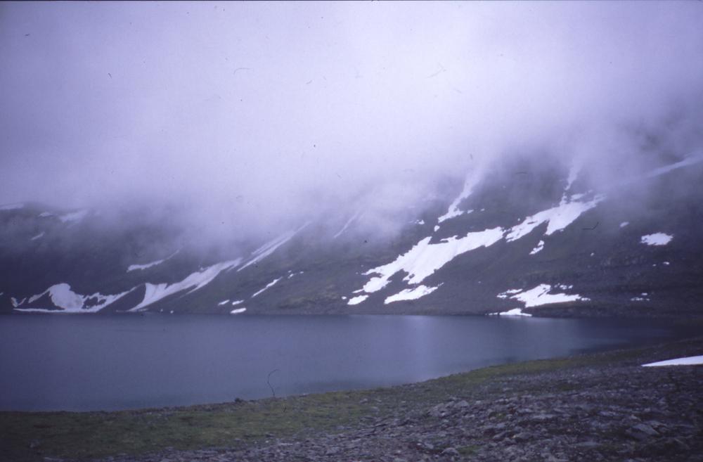 1000 1999 norvegia30