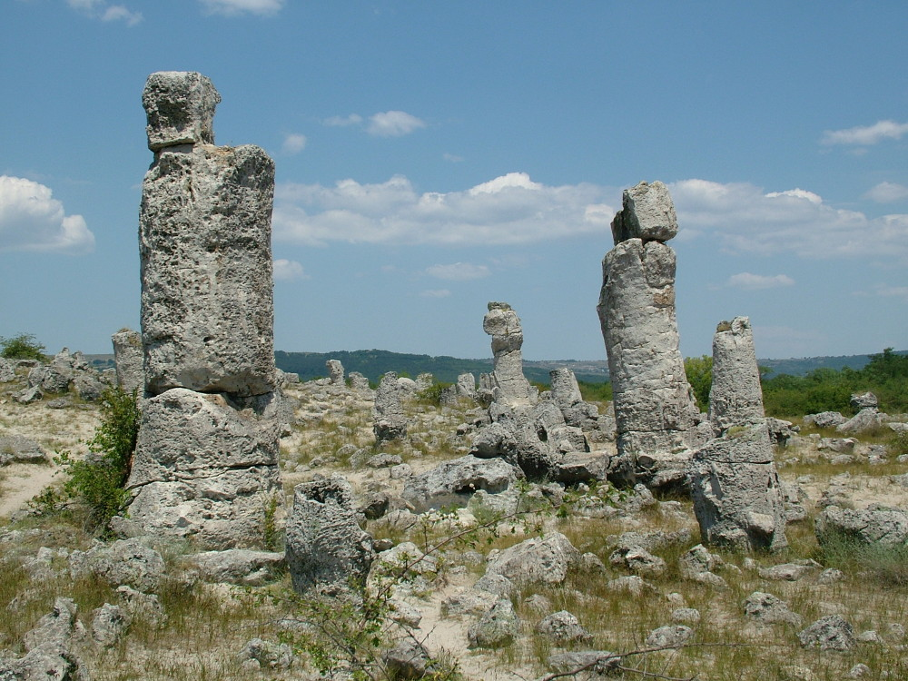 koerdo bulgaria (10)