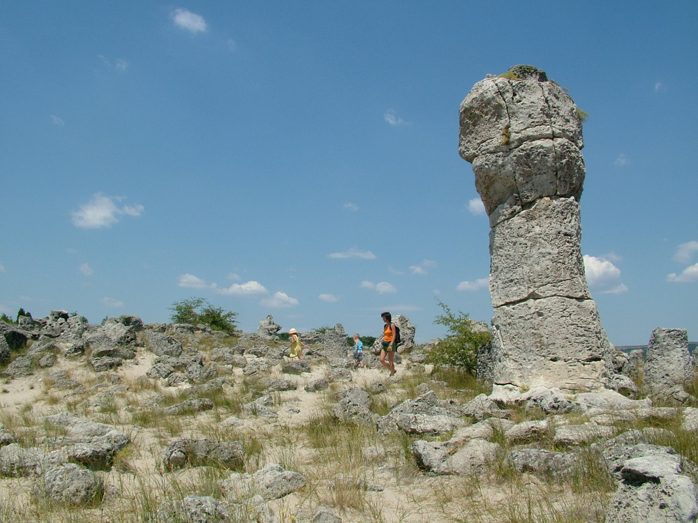 koerdo bulgaria (3)