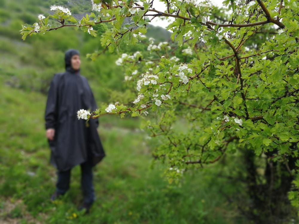 Fotó: Barna Béla