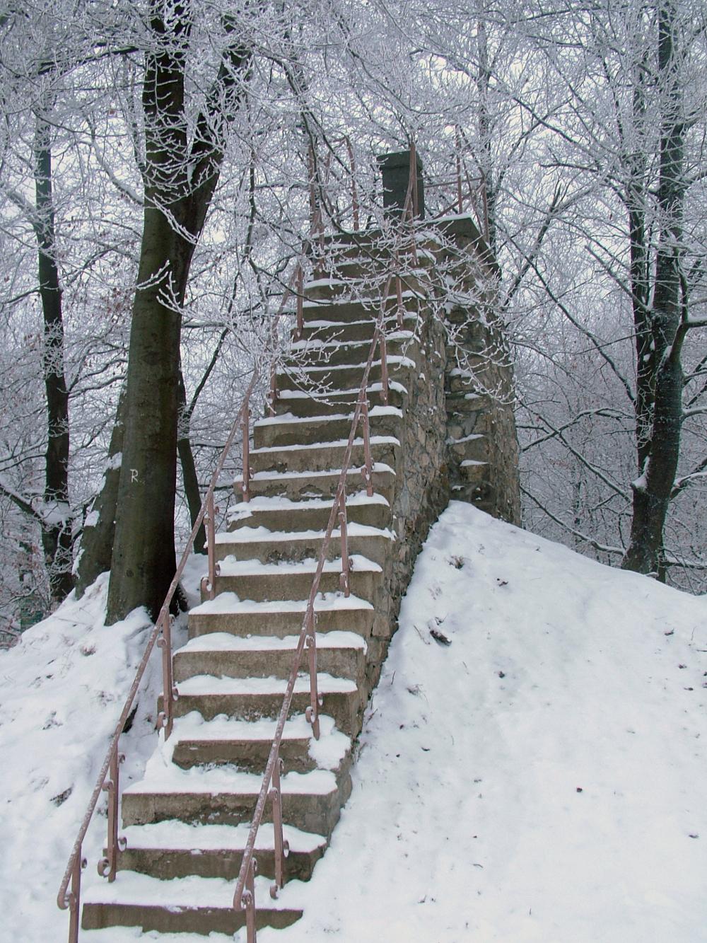 Belgium teteje - Fotó: Barna Béla