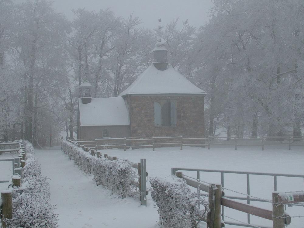 A Botrange télen - Fotó: Barna Béla