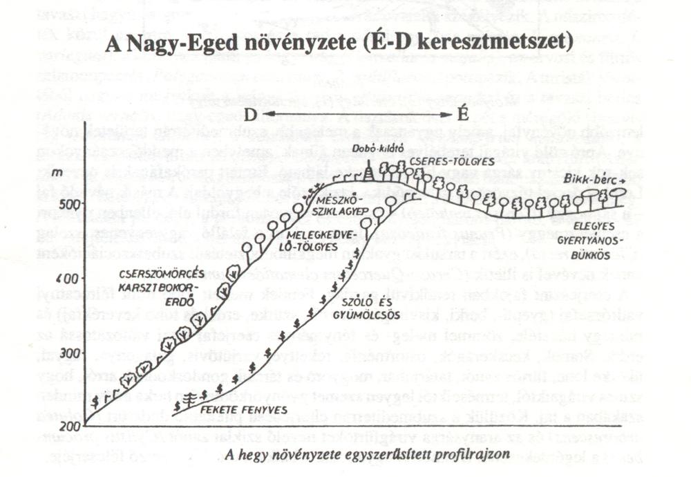 Forrás: Kárársz Imre